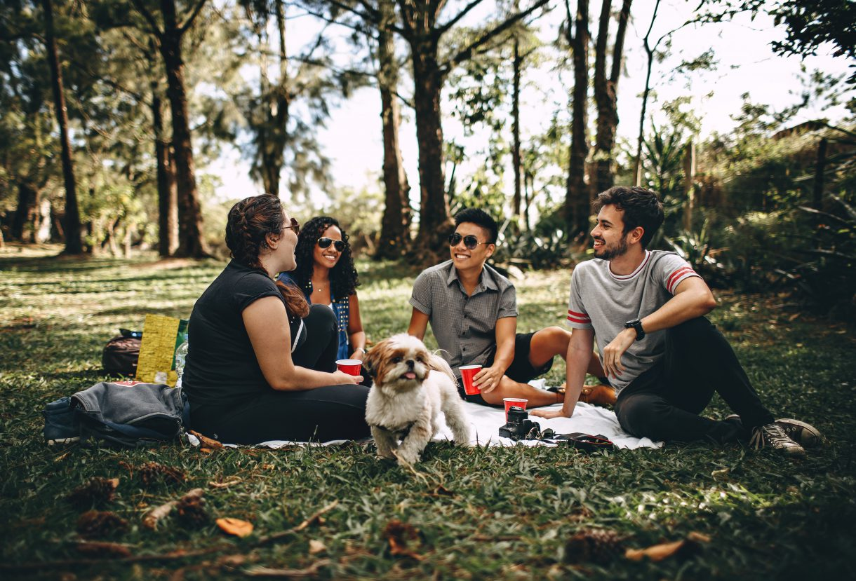 group-of-people-sitting-on-white-mat-on-grass-field-745045