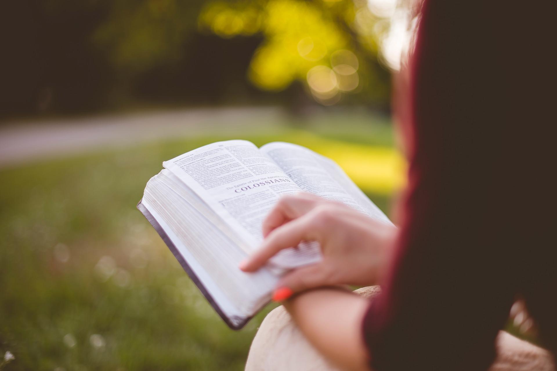 Bible study Colossians